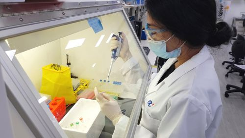 Scientists from the Experimental Drug Development Centre, A*STAR, preparing ETC-159 clinical samples for real-time Reverse Transcription-Polymerase Chain Reaction (RT-PCR) which amplifies the genetic material. (Photo credit: A*STAR)