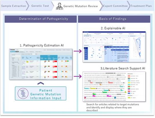 Fujitsu, Kyoto University Develop Explainable AI Verification System for Estimating Disease-Causing Potential of Genetic Mutations
