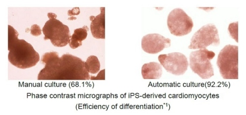 Hitachi Developed Automation Technology of 3D Culture to Expand Regenerative Medicine Business