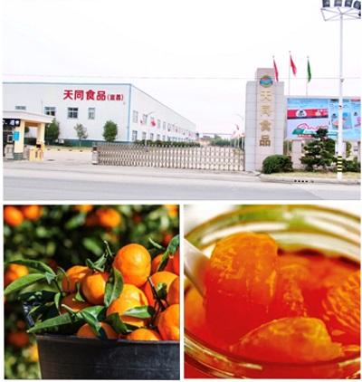 天韵国际于中国中部地区发展势头良好 宜昌天同收获佳绩