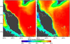 Tracking Ocean Salinity from Space using Colour
