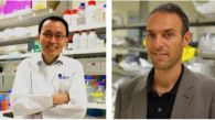 Two A*STAR Scientists Clinch Prestigious 2015 EMBO Young Investigator Awards