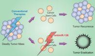 (Иллюстрация A*STAR.  Мультиформная глиобластома- самый распространенный вид рака...