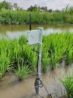 Murata Manufacturing Conducts Field Trial Utilizing Soil Monitoring System to Visualize the Condition of Agricultural Land