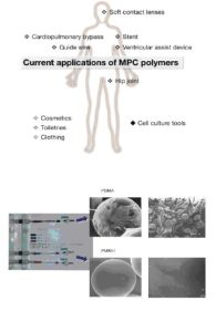Biopolymer - Designer Interfaces between Biological and Artificial Systems